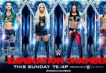 WWE Elimination Chamber 2020