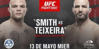 UFC Fight Night 173: Smith vs. Teixeira