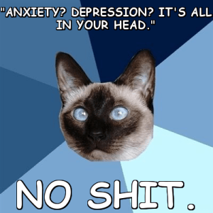 """Image is of Chronic Illness Cat - a siamese with blue eyes. Text says """"Anxiety? Depression? It's all in your head. NO SHIT."""""""