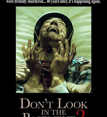 Don't Look in the Basement 2 (2015) Movie Watch Online Free