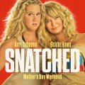 Snatched 2017 Hindi Dubbed Movie Free Download