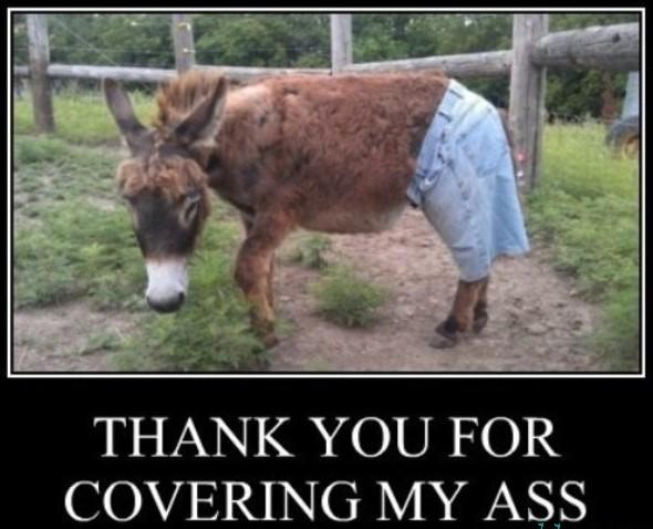Thank-You-Demotivational-Poster-Covering-MyDonkey-Ass