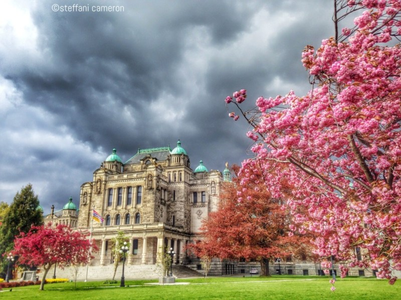 This is the BC Parliament Buildings from the back, where people seldom visit, proof that sometimes looking at things differently can be a whole other reward.