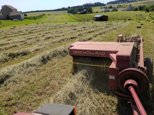 Hay Baler in Action