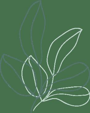 Dessin de feuillage vert. Création graphique by full of lau.