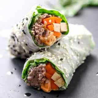 Vegan Nutty Plant Power Summer Rolls