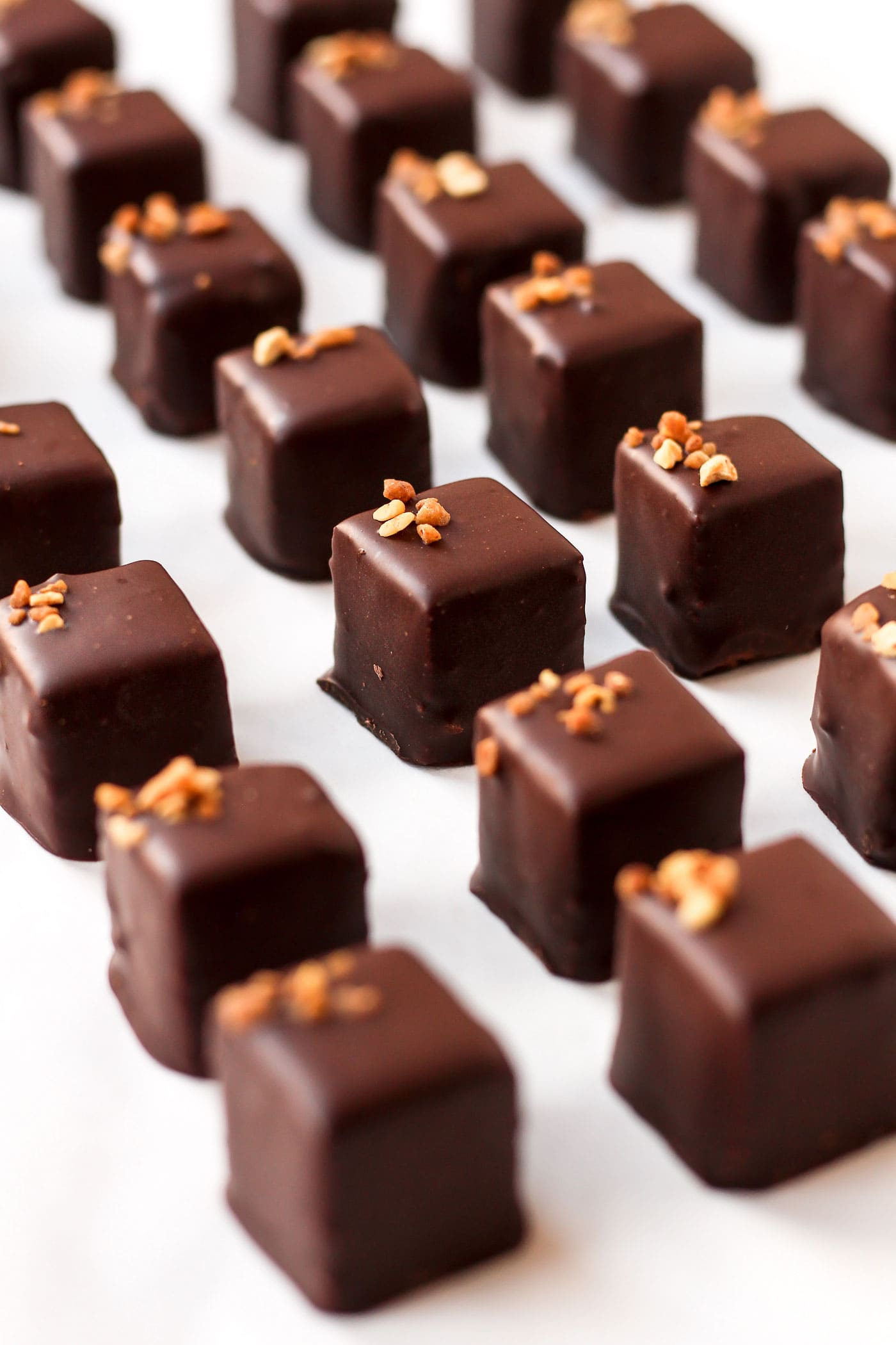 Vegan Praline Chocolates