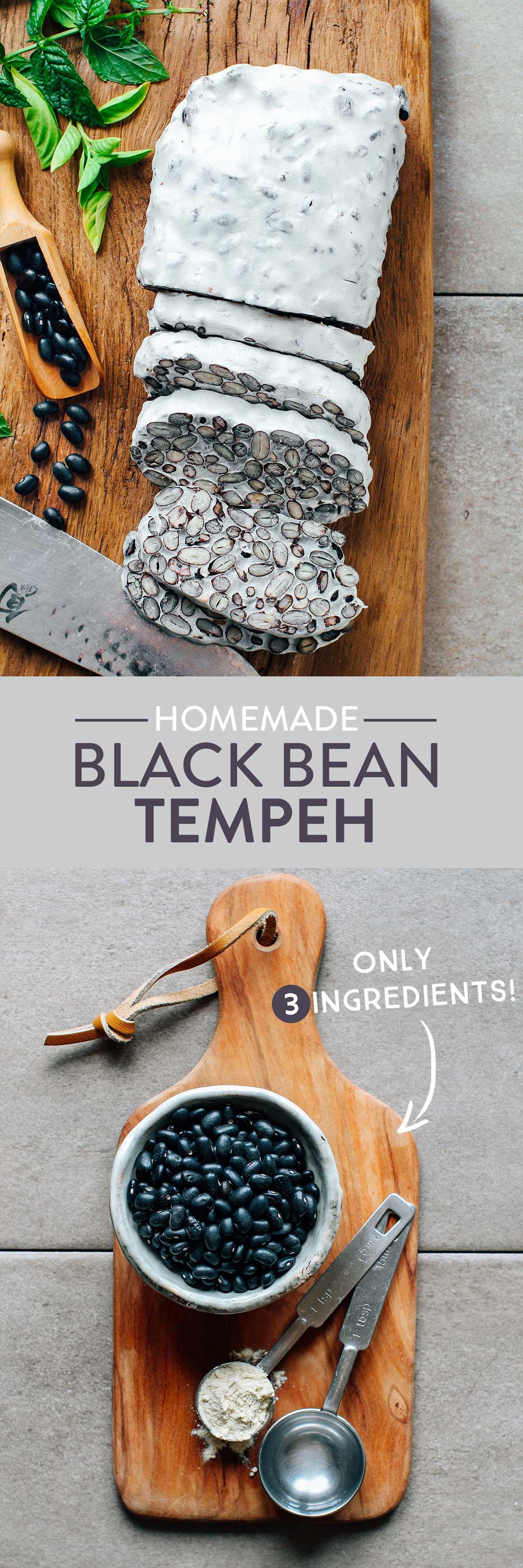Black Bean Tempeh (Soy-Free!)