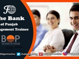 Bank of Punjab Management Trainee