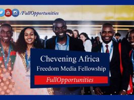Chevening Africa Freedom Media Fellowship