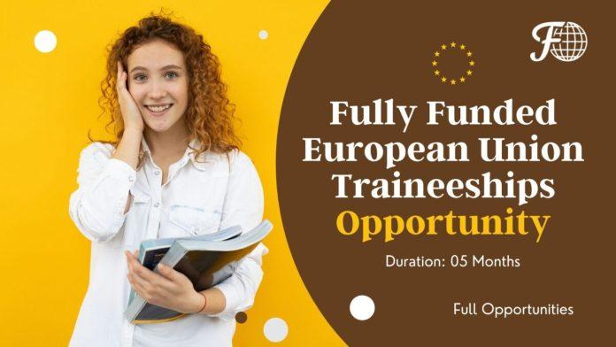 European Union Traineeships