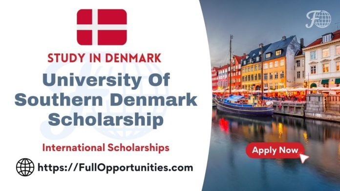 University Of Southern Denmark Scholarship