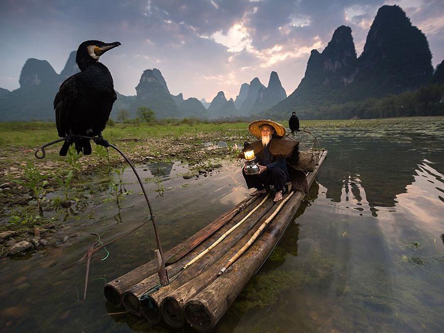 13. Бакланы, Китай. Фото: Abderazak Tissoukai.