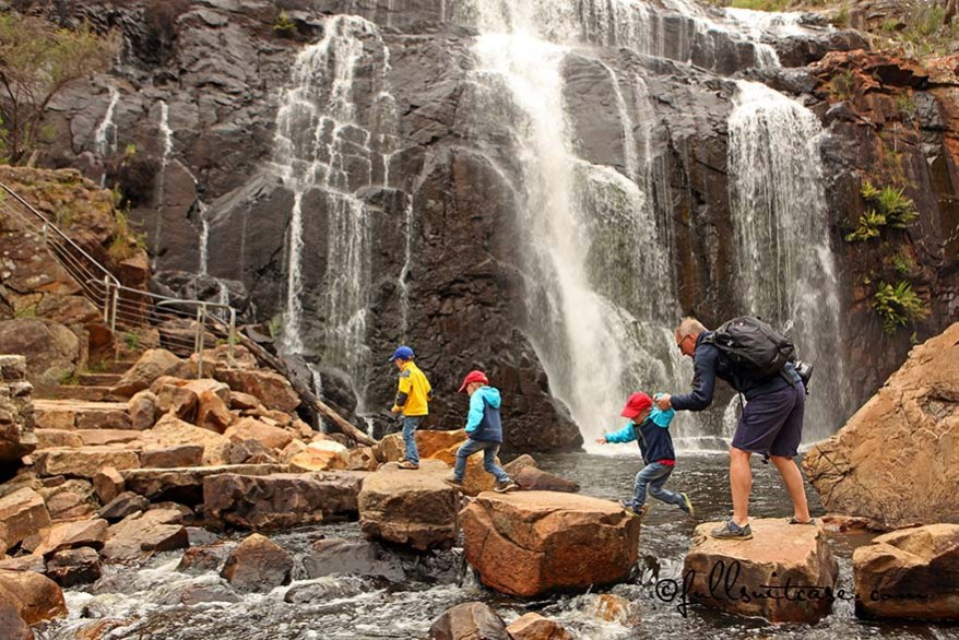 Father helping children to cross the river at MacKenzie Falls in The Grampians Australia