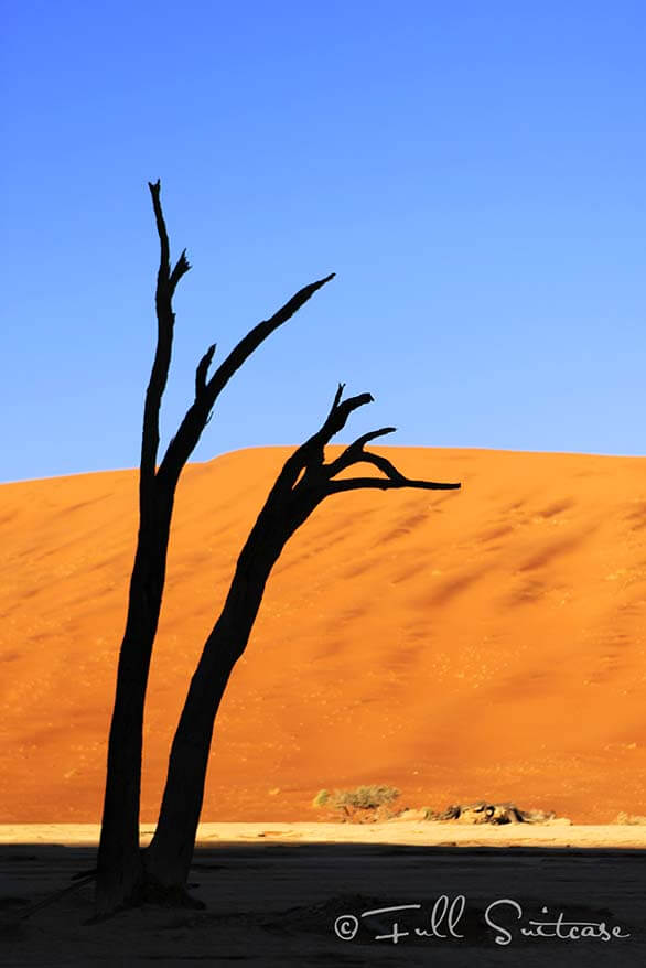 Deadvlei at sunrise. Sossusvlei Namibia
