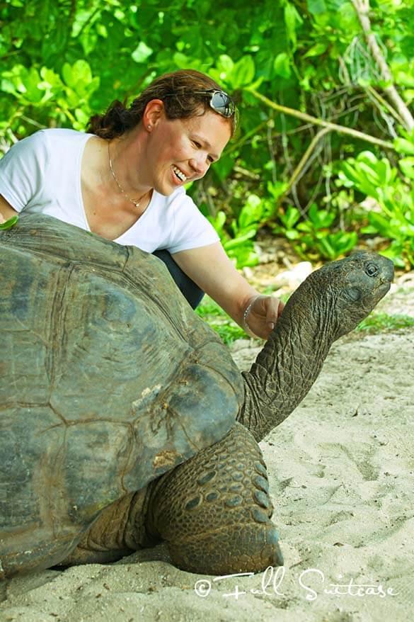 Seychelles Giant Tortoises on Cousin island