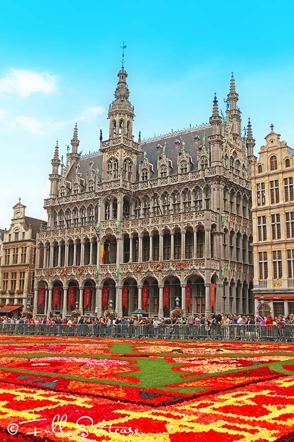 Brussels flower carpet 2014 - no two carpets are ever the same