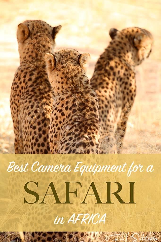 Best camera equipment for safari in Africa