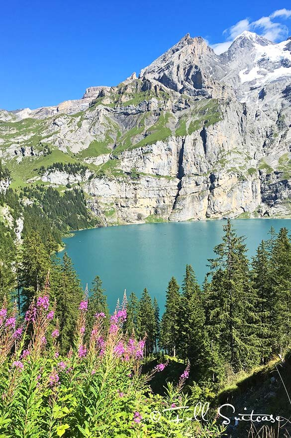 Oeschinen lake with summer flowers