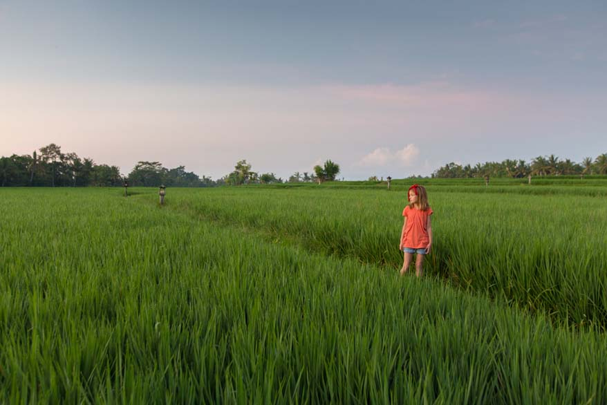 Bali - favourite family travel destination - Travel Babbo