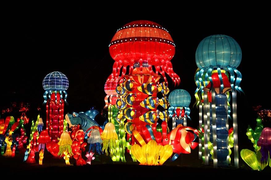 China Light festival in Antwerp Zoo in winter