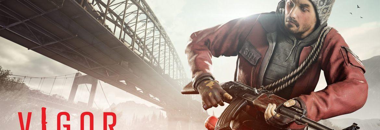 Vigor Update 1.1 Bridges