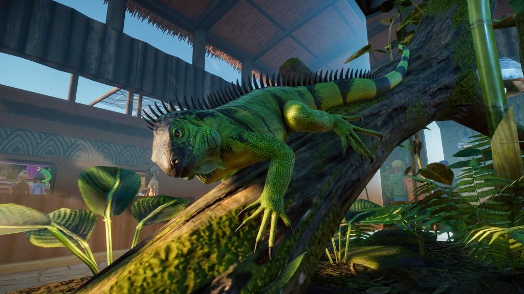 Planet Zoo Iguana