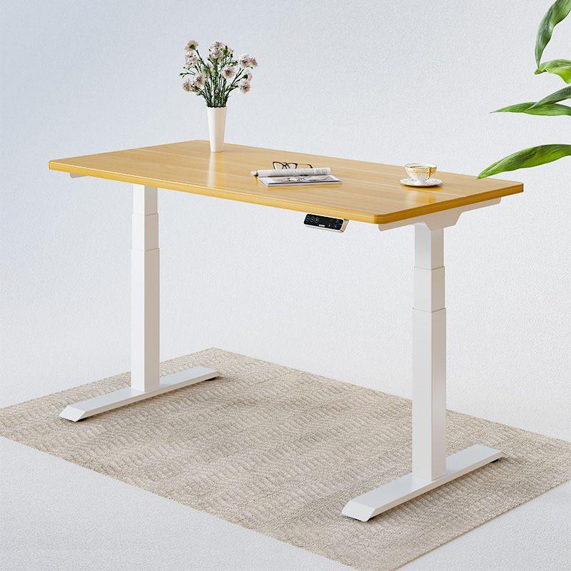 Flexispot Standing Desk Pro Series E7