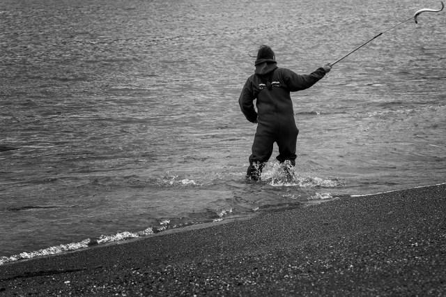 Swinging the eel on the hook,  Klamath River Estuary, CA
