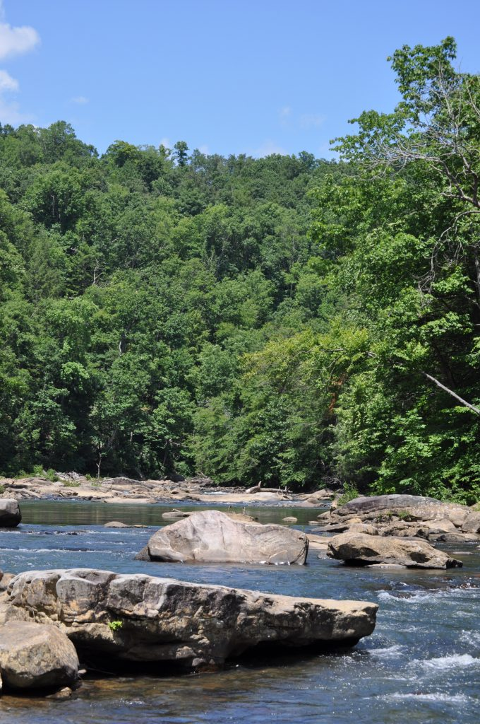 This Middle Fork River at Audra State Park