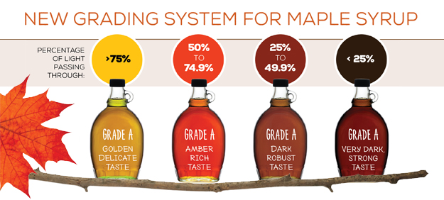 Maple Syrup Grading