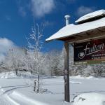 Fulton's Visit FAQs