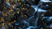 waterfall-142636_1280