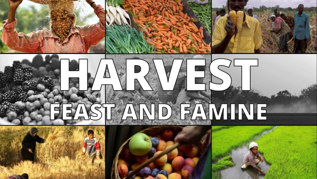 Harvest – Feast and Famine – Mark 14:1-9: Dave Sewell