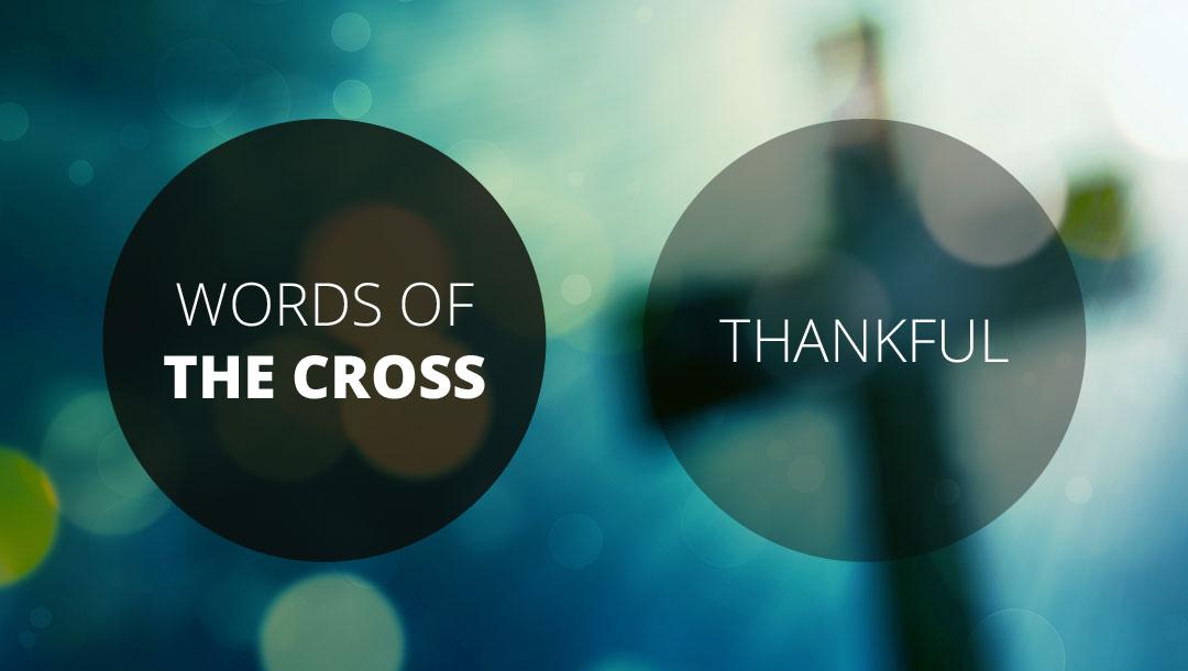 Words of the Cross: Thankful   Revelation 5:1-14   Andrew Gardner