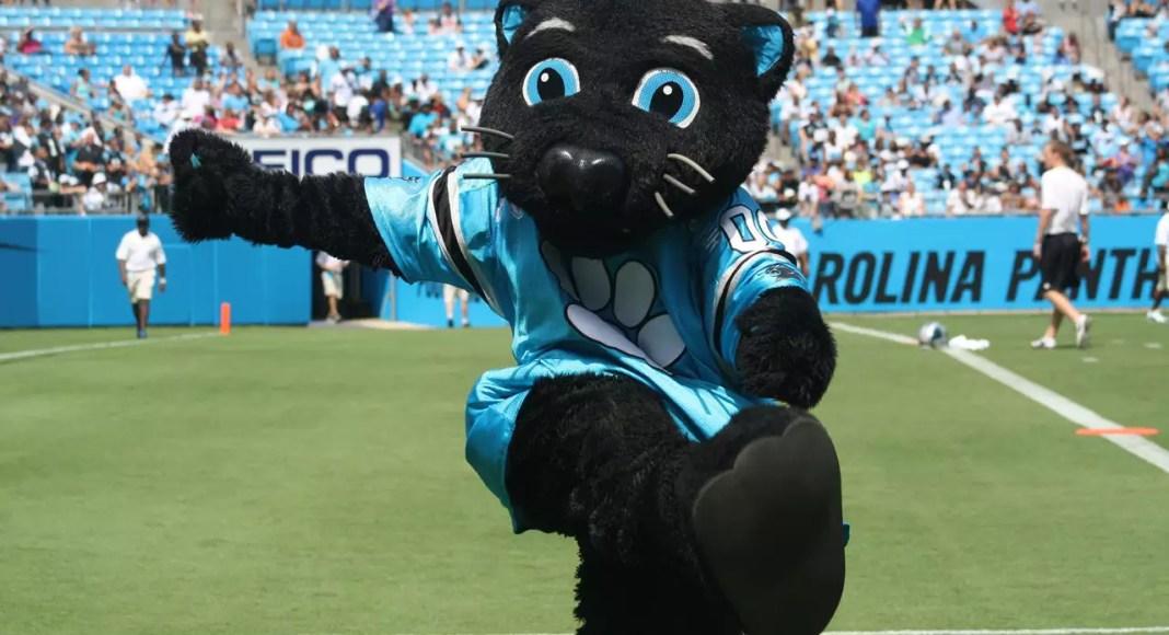 Sir Purr, mascote do Carolina Panthers