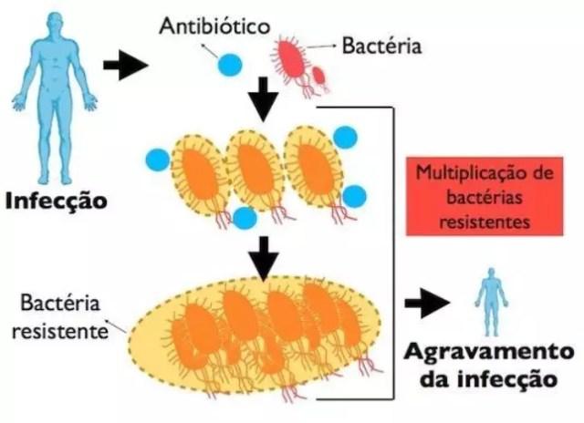 processo da resistência bacteriana