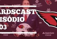 Offseason Cardinals 2019