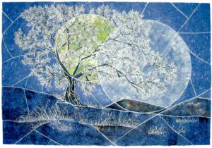 solstice-image