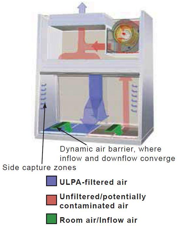 Biological Safety Cabinets Fume Hoods