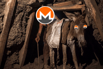 Inside one xmrig botnet miner
