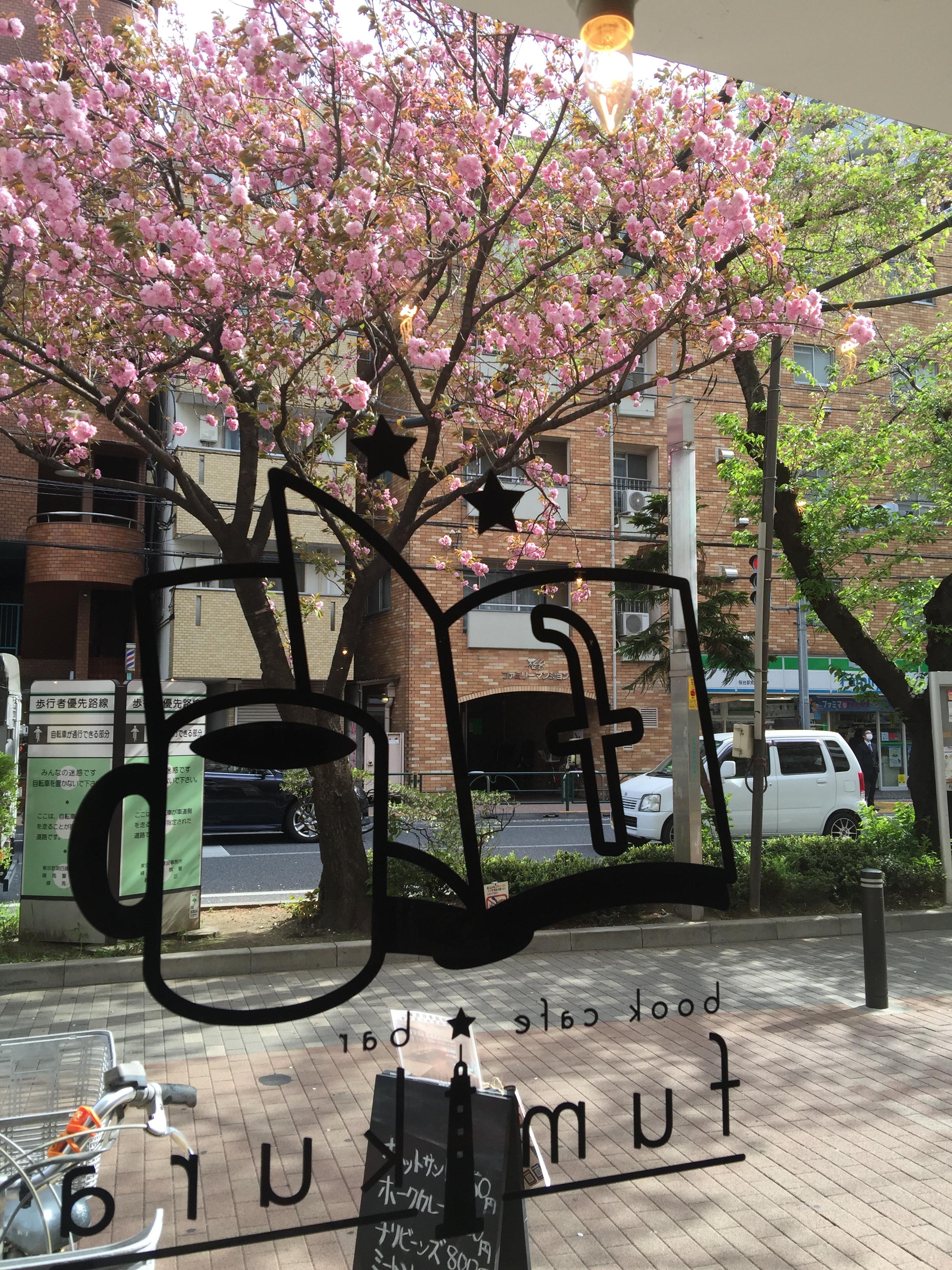 4月16日:八重の桜臨時営業(11:00-18:00頃)