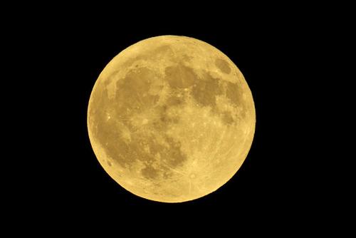 月見る月の今宵は名月