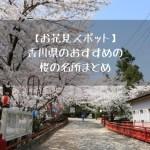 【お花見スポット】香川県のおすすめの桜の名所まとめ