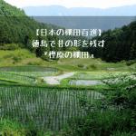 【日本の棚田百選】200年以上の間、昔の形のままを残す棚田【樫原の棚田】