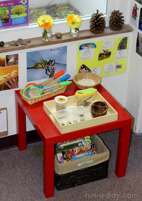 Insects and Plants in the Preschool Science Center | Fun-A-Day!