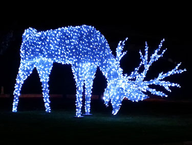 Christmas Is Coming Decoration Ideas  Fun Advisor
