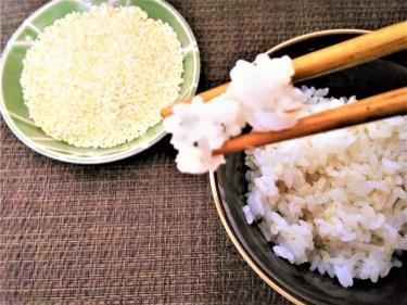 ゆでもち麦を冷凍保存した後の解凍法は?レシピと一日量を紹介!