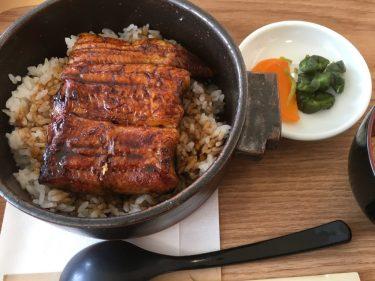 うなぎの蒲焼を新潟で食べるならおすすめの安いお店を紹介!