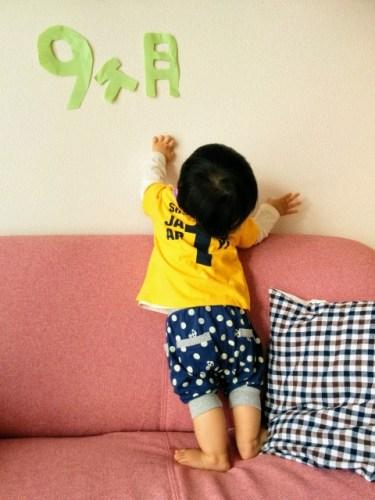 生後8~9ヶ月の男の子育児!買ってよかったものランキング